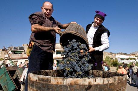 Festa Verema Poboleda wine grape harvest.
