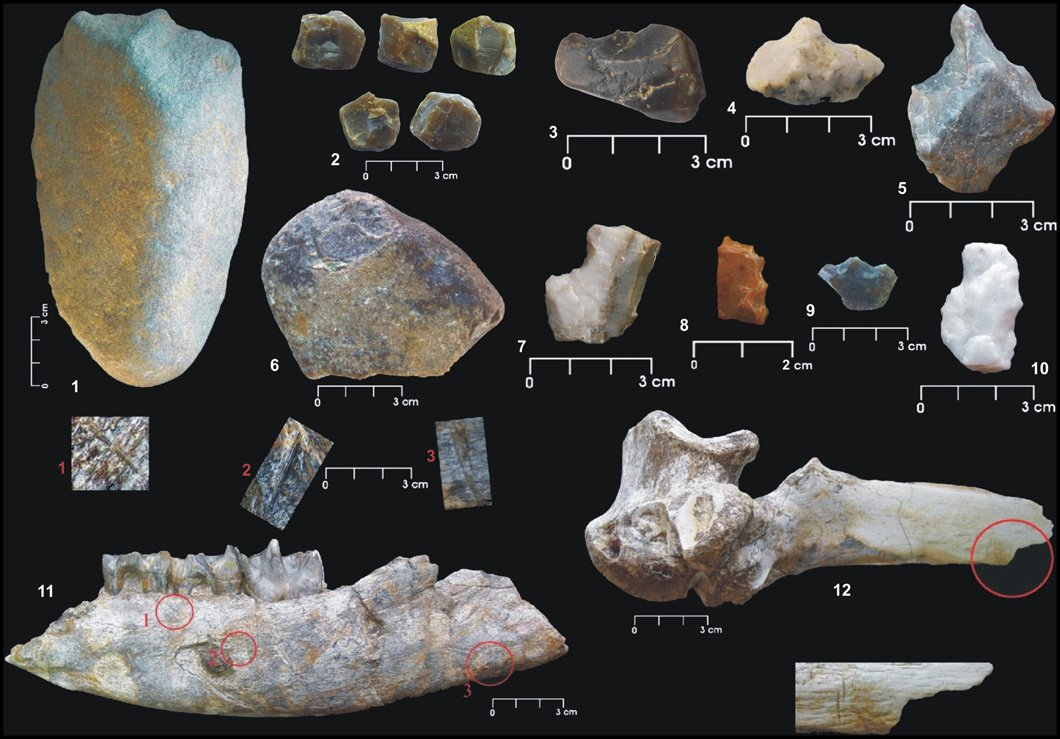 Vallparadís Lower Palaeolithic site. Stone tools and bones with cutmarks circled in red. Image from Martínez et al. (2010) doi:10.1073/pnas.0913856107