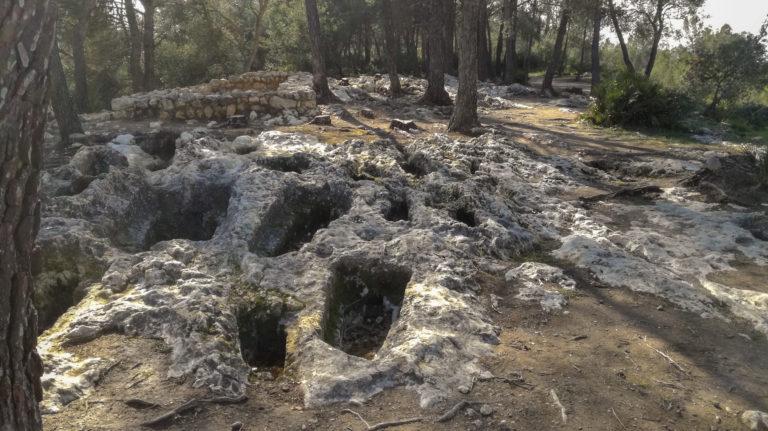 Pla dels Albats necropolis, Olèrdola monumental complex