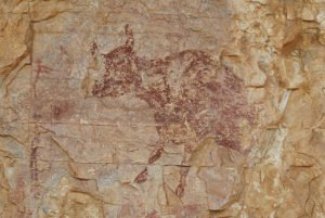 Rock art in rock shelter, with scene of hunters and cow at the UNESCO site of Abric del Mas d