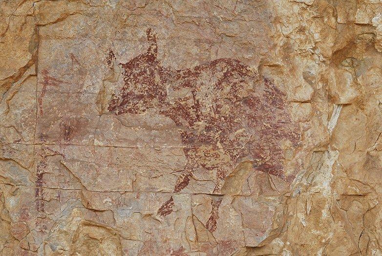 Rock art in rock shelter. Scene with hunters and cow. UNESCO site of Abric del Mas d'en Ramon d'en Bessó, Muntanyes de Prades, Catalonia