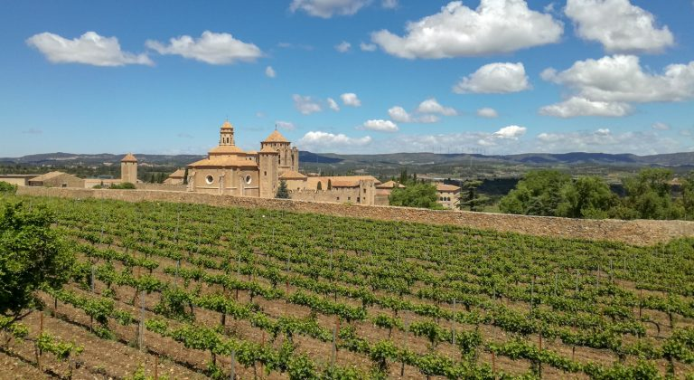 Poblet Monastery and vineyards, Catalonia. The Monastery, Reial Monestir de Santa Maria de Poblet in Catalan, is a UNESCO world heritage site