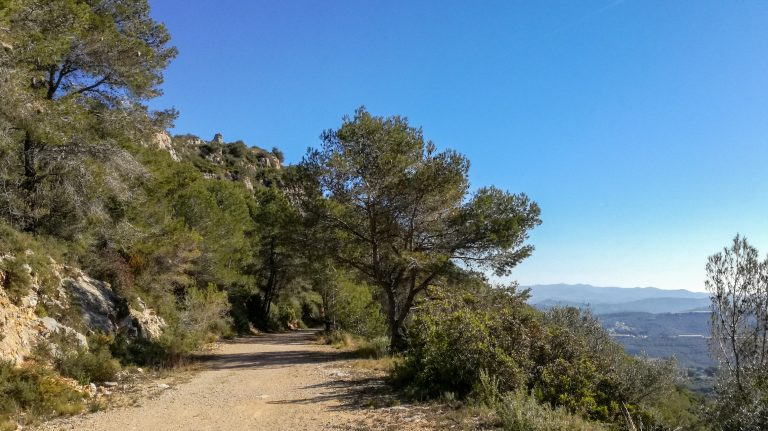 Olèrdola Penedès vineyard hike trail overlooking Penedès valley to the south