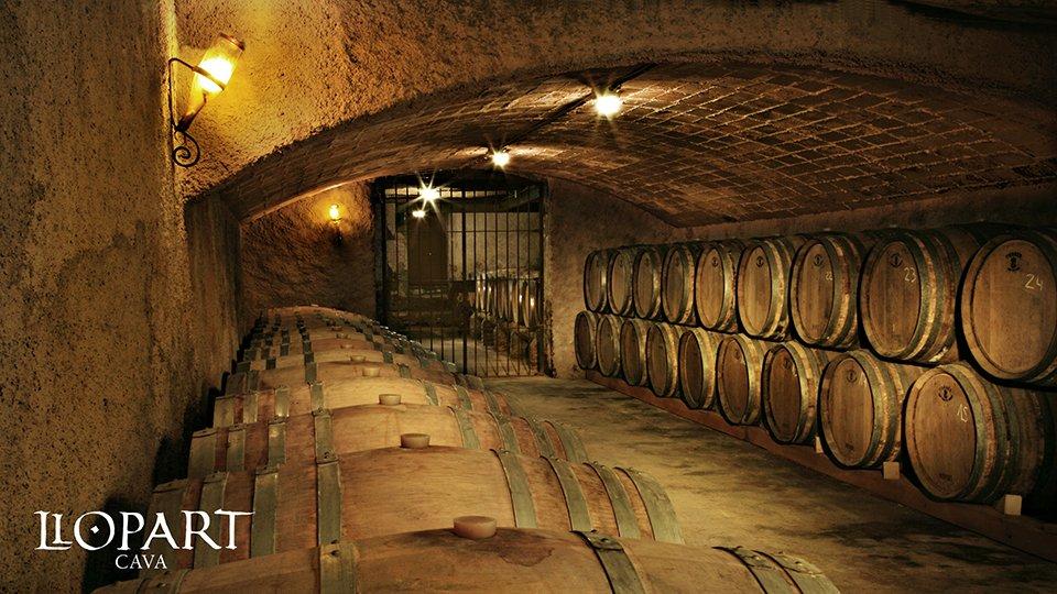 Llopart cava cellar. Image by Llopart