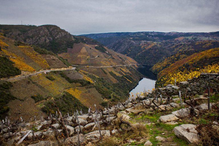 DOP Ribeira Sacra vineyards, Galicia