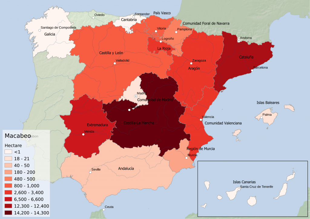 Spain wine regions - white grape variety Macabeo hectarage by Autonomous Community